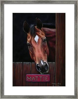 Mattie - Horse Portrait Framed Print by Yvonne Hazelton