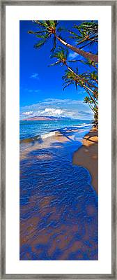 Maui Palms Framed Print by James Roemmling