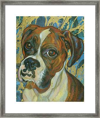 Boxer Framed Print by Jane Oriel