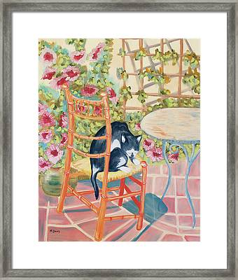 Max On The Patio Framed Print by Marilyn Drury