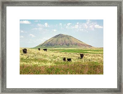 Mccann Butte Framed Print by Todd Klassy