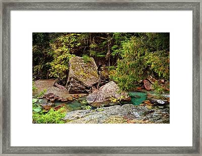 Mcdonald Creek 11 Framed Print by Marty Koch