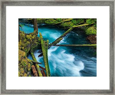Mckenzie River Color Framed Print by Leland D Howard