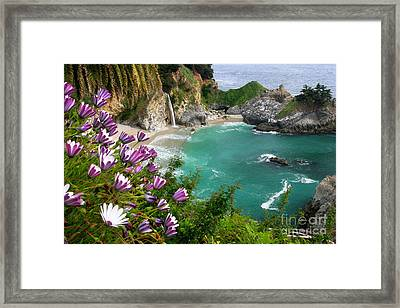 Mcway Falls Framed Print by Buck Forester