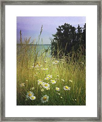 Meadow Framed Print by Joy StClaire
