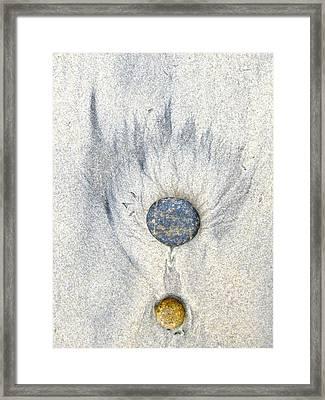 Medallion Framed Print by Don Ziegler