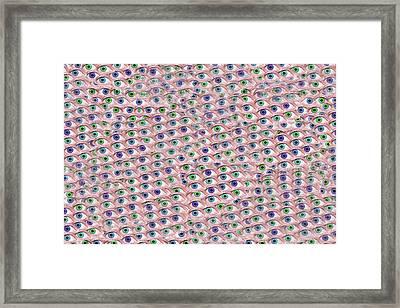 Meditative Puzzle Hypnosis  Framed Print by Betsy C Knapp