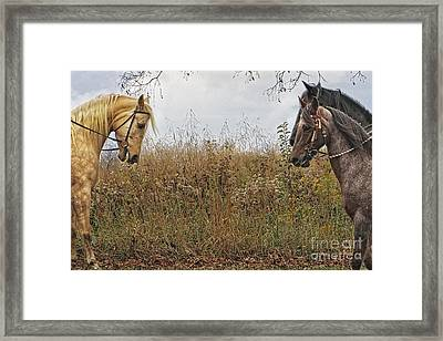 Meeting A Friend Framed Print by Dawn Gari