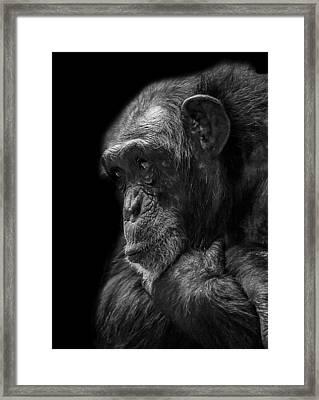 Melancholy Framed Print by Paul Neville