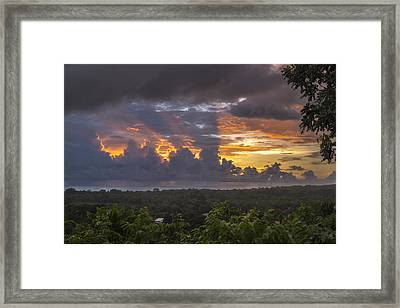Memories Of Matapalo Framed Print by Jeremy Jensen