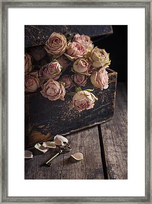 Memory Box Framed Print by Amy Weiss