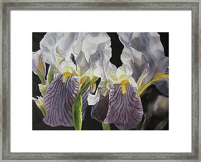 Memory Of The Iris Framed Print by Alfred Ng