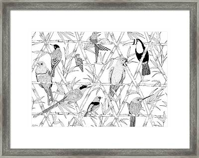 Menagerie Black And White Framed Print by Jacqueline Colley
