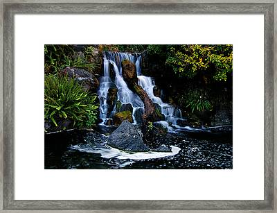 Mental Vacation Framed Print by Clayton Bruster