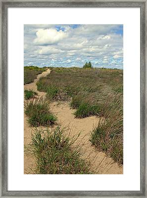 Mentor Headlands Beach Trail Framed Print by Brian M Lumley