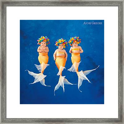 Mermaids Framed Print by Anne Geddes