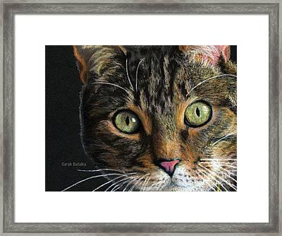 Mesmer Eyes Detail  Framed Print by Sarah Batalka