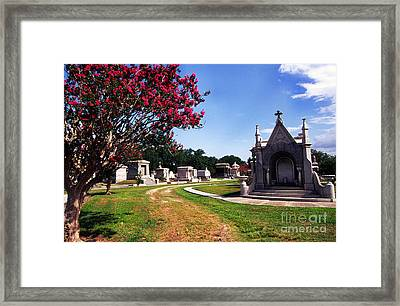 Metairie Cemetery New Orleans Framed Print by Thomas R Fletcher