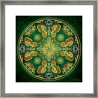 Metamorphosis Mandala Framed Print by Cristina McAllister
