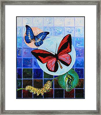 Metamorphosis Of The New Life Framed Print by John Lautermilch