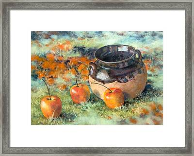 Mexican Apples Framed Print by DEVARAJ DanielFranco