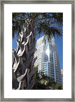 Miami Beach Skyscraper Palm Tree Framed Print by Toby McGuire