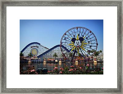 Mickey's World Framed Print by Mountain Dreams
