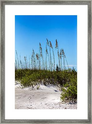 Mid Day Dunes Framed Print by Marvin Spates