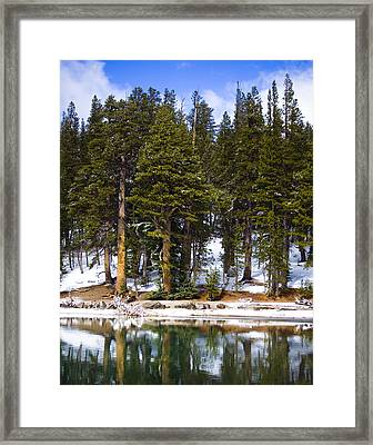 Mid Day Melt Framed Print by Chris Brannen