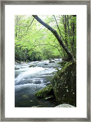 Middle Fork River Framed Print by Marty Koch