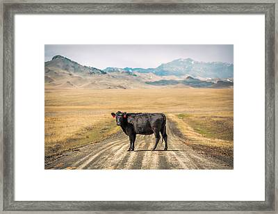 Middle Of The Road Framed Print by Todd Klassy