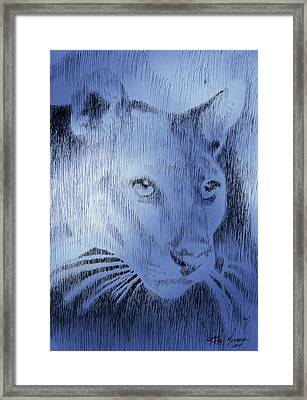 Midnight Blue Framed Print by Robbi  Musser