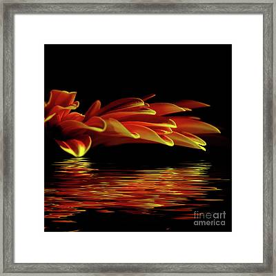 Midnight Glow By Kaye Menner Framed Print by Kaye Menner