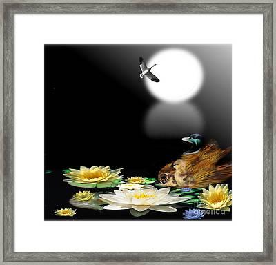 Midnight Serenity Framed Print by Belinda Threeths