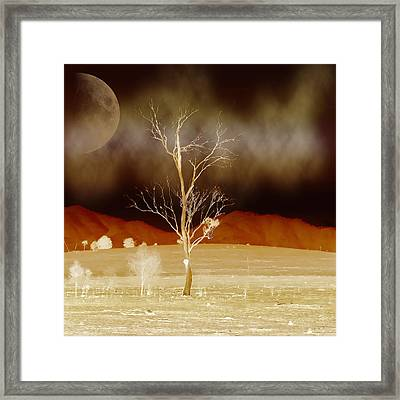 Midnight Vogue Framed Print by Holly Kempe