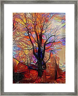 Mighty Oak  Framed Print by Snook R