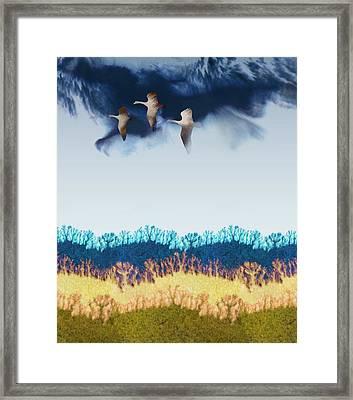 Migration Framed Print by Varpu Kronholm