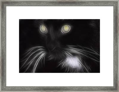 Mikey Framed Print by Holly Ethan