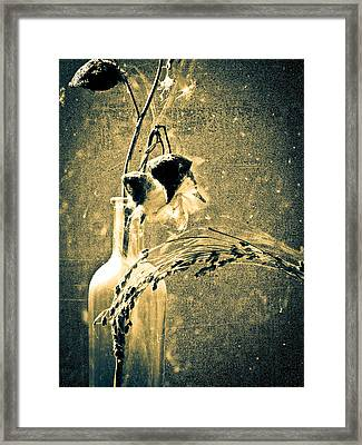 Milk Weed And Hay Framed Print by Bob Orsillo