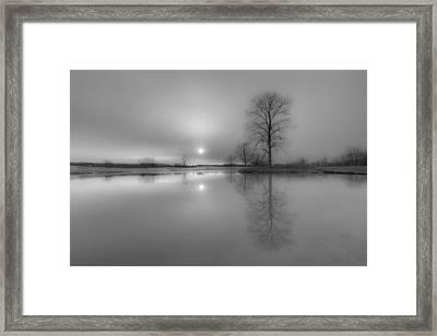 Milktoast Framed Print by Everet Regal