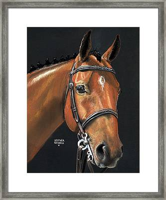 Miner - Bay Horse Portrait Framed Print by Heather Gessell