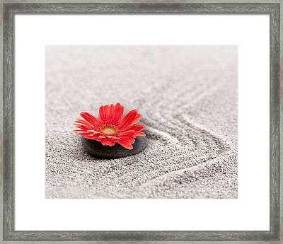 Mineral Flower Framed Print by Delphimages Photo Creations