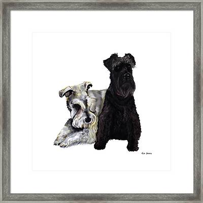 Mini Schnauzer Buddies Framed Print by Kim Souza