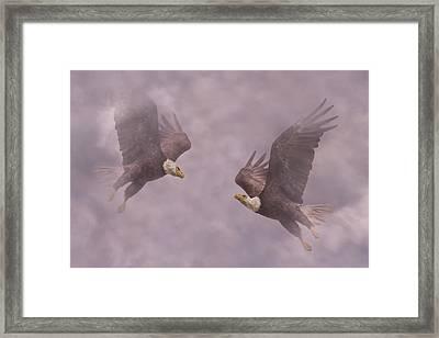 Mirror Eagles Framed Print by Betsy Knapp
