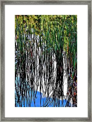Mirror Image Framed Print by Stacie Gary