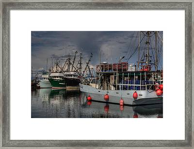 Miss Molly Framed Print by Randy Hall