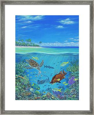 Mission Blue Framed Print by Danielle Perry