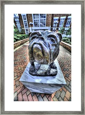 Mississippi State Bulldog Framed Print by JC Findley