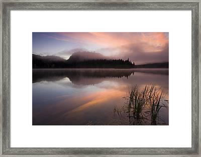 Misty Dawn Framed Print by Mike  Dawson