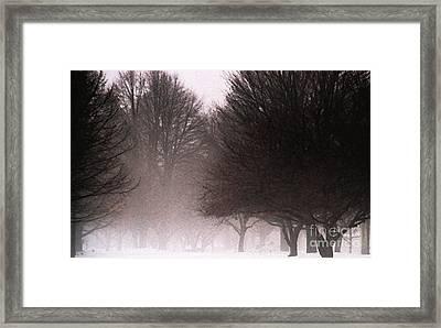 Misty Framed Print by Linda Knorr Shafer